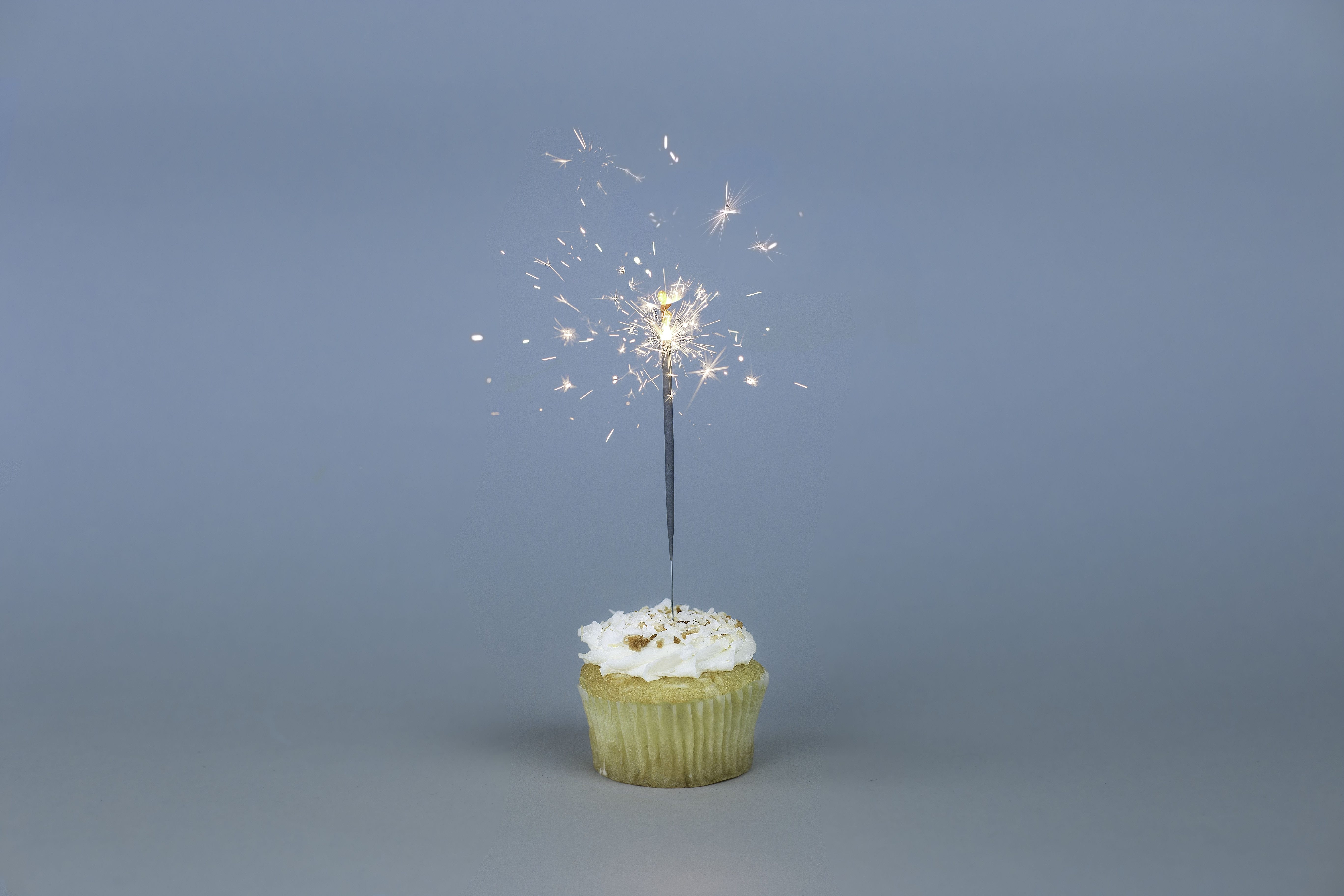 Wellie Wisher Birthday Celebration