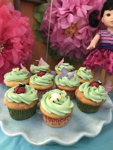 Wellie Wisher Theme Cupcakes with Lady Bugs and Bees