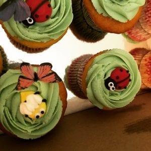 Wellie Wisher Theme Cupcakes