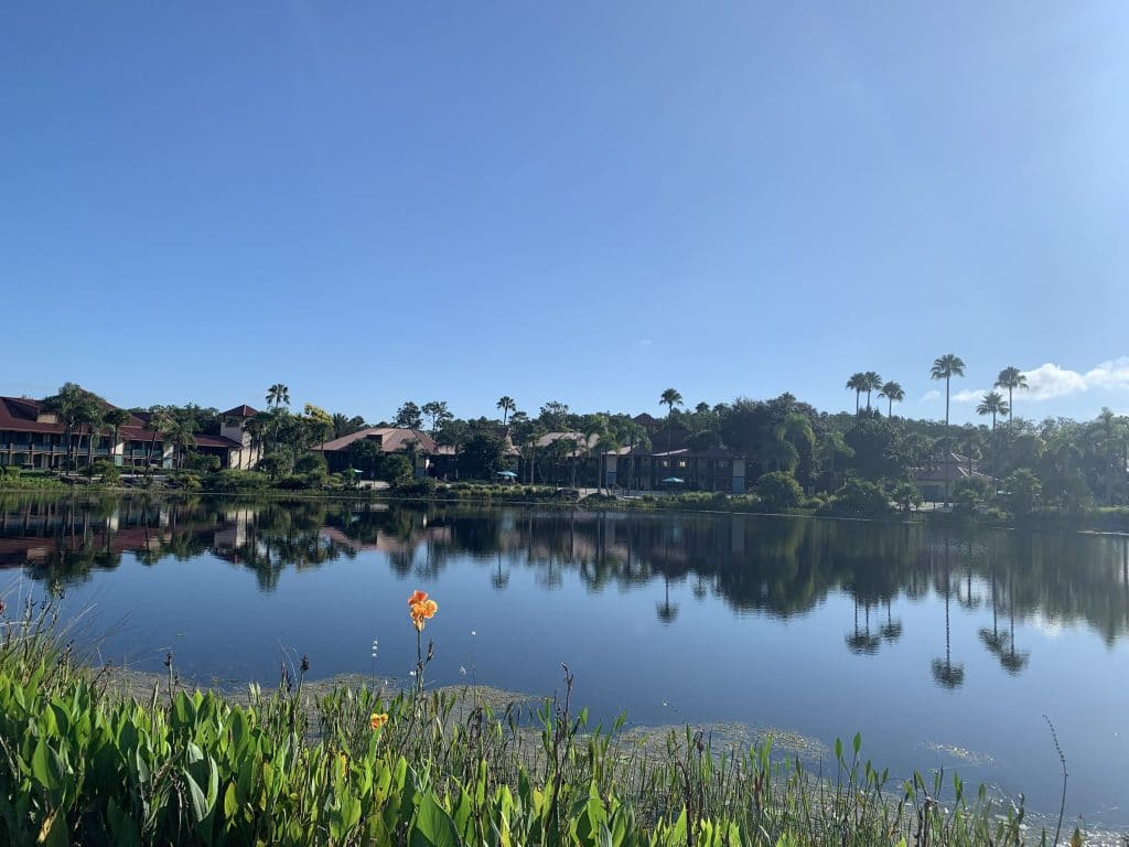 Resort Grounds Coronado Springs
