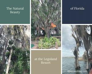 Natural Beauty of Florida at the Legoland Resort