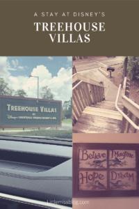 Disneys Treehouse Villas at Saratoga Springs resort