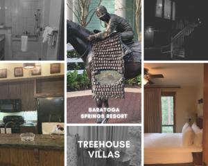 Staying at Disney's Treehouse Villas