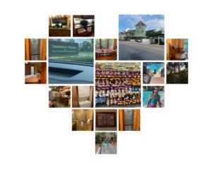 Disney's Treehouse Villas collage