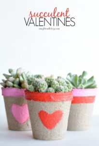 Succulent Valentines in decorated pot with heart